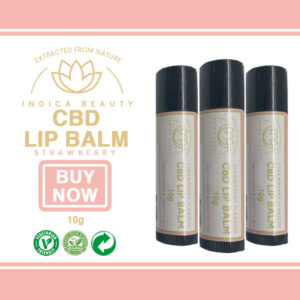 CBD Lip Balm Strawberry Flavour (900mg Full-Spectrum Formula)